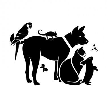 vinilo clínica veterinaria