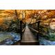fotomural-puente