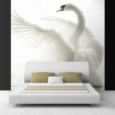 Fotomural Cisne Blanco producto vinilos