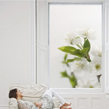Vinilos translúcidos detalle flores blancas