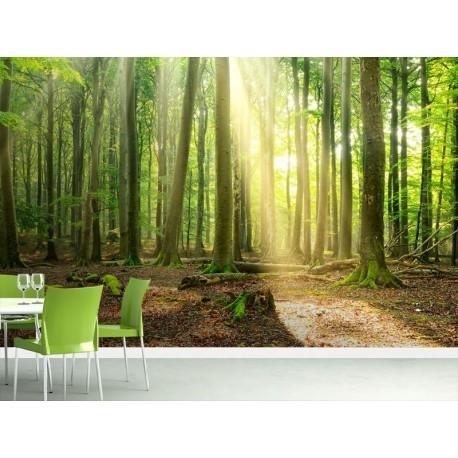fotomural comedor bosque verde