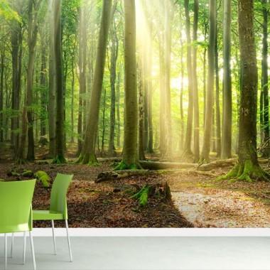 fotomural bosque verde en ambiente
