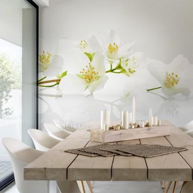 fotomural-blanco-floral-en-comedor