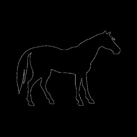Vinilo caballo a medida