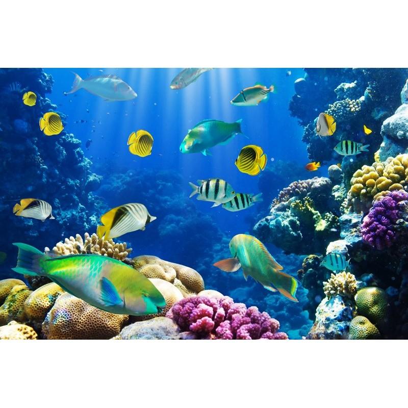 Fotomural fondo marino for Pegatinas de pared infantiles