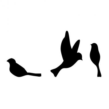 Vinilo pájaros grupo