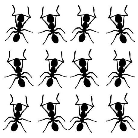 Hormigas Motivo I decoración con vinilo
