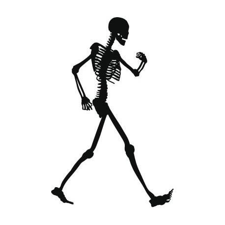 adhesivo decorativo Esqueleto Motivo I