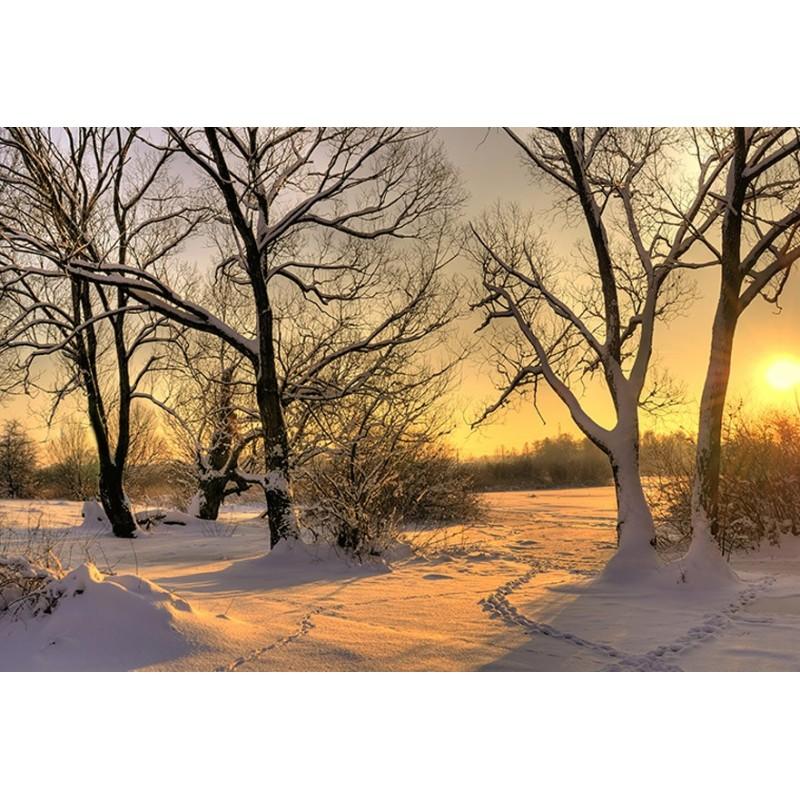 Vinilo paisaje nevado para portatil for Vinilos pared paisajes