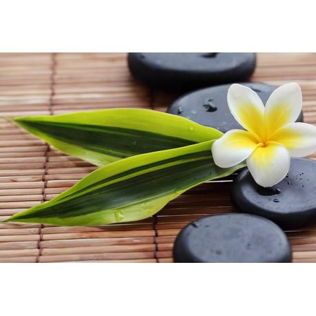 Fotomural Zen Flor imagen vista previa