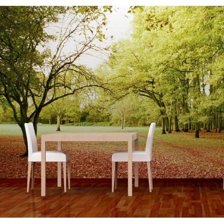 vinilo decorativo Fotomural Parque Otoñal
