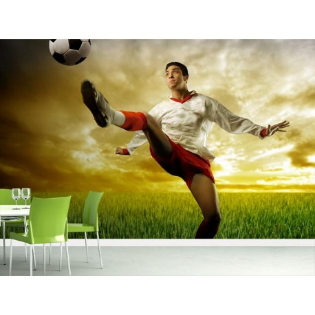 vinilo decorativo Fotomurral Futbol II