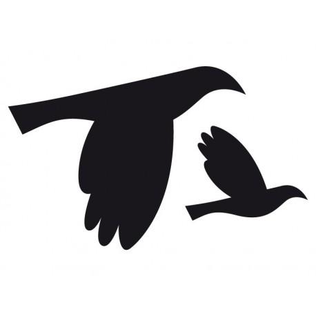 pegatina pared Pájaros motivo
