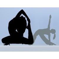 Yoga Postura I