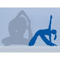 Yoga Postura II
