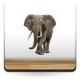 vinilos imagen producto Elefante Escaparate