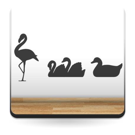 Aves Estanque producto vinilos