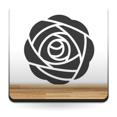 Geometría Floral VII imagen vista previa