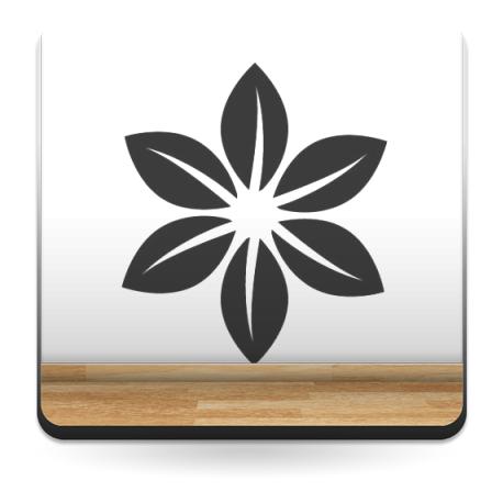 Geometría Floral IX imagen vinilo decorativo