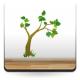 Árbol II Colección Alfy adhesivo decorativo ambiente