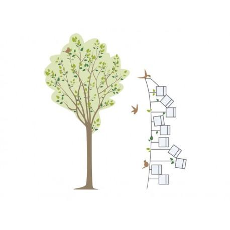 Árbol Pajaritos Fotos Composición decoración con vinilo