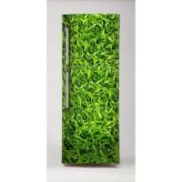 Hierba para frigorífico
