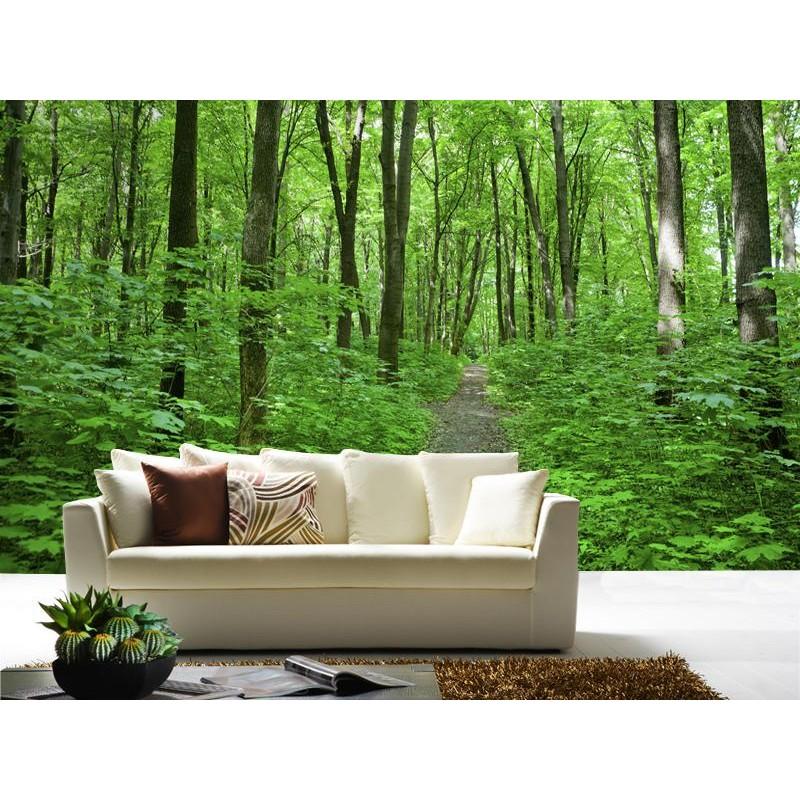 Fotomural bosque verde for Fotomurales naturaleza