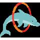 Delfín Pirueta imagen vista previa