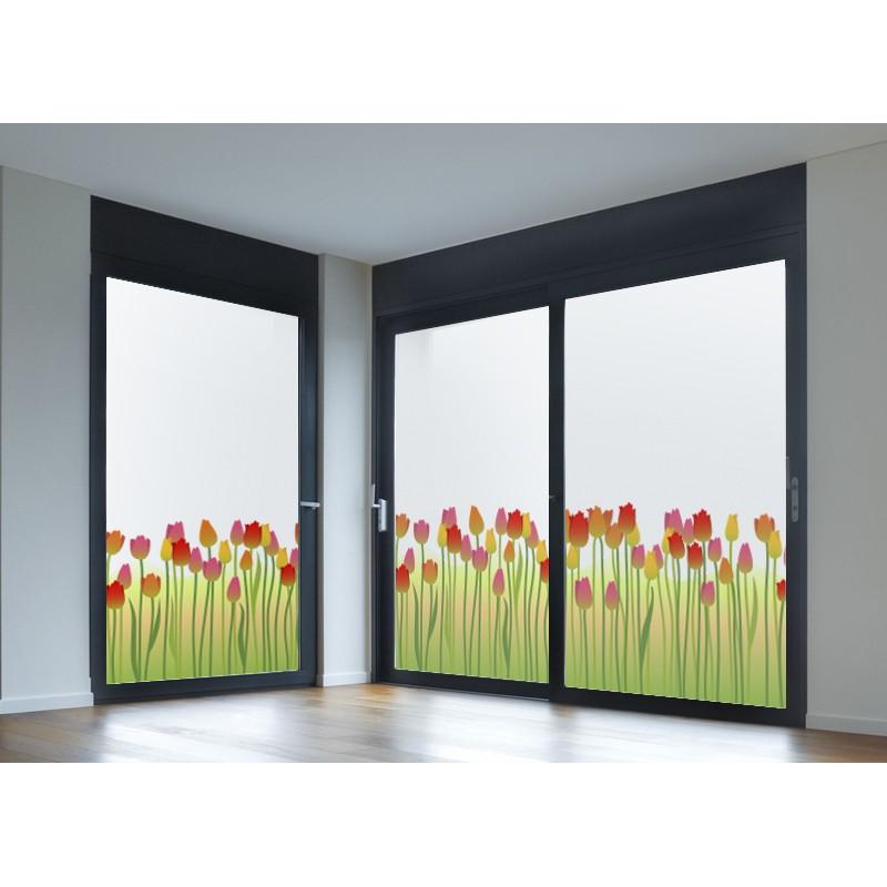 Vinilos para cristales vinilo transl cido impreso tulipanes - Vinilos cristales ventanas ...