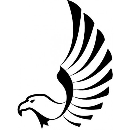 Águila Decoración Vehículo imagen vinilo decorativo