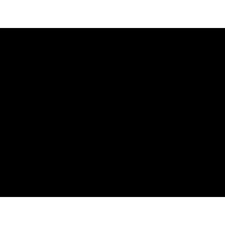 pegatina pared CrossFit 02