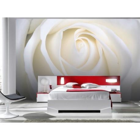 vinilos imagen producto Fotomural Rosa Blanca