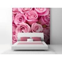 Fotomural Rosas Rosa