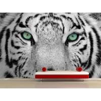 Fotomural Tigre Blanco