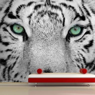vinilos imagen producto Fotomural Tigre Blanco