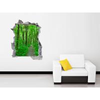 Boquete pared paisaje bosque
