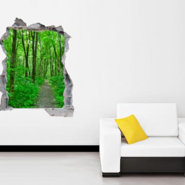 agujero-en-paisaje-vinilo-hol01