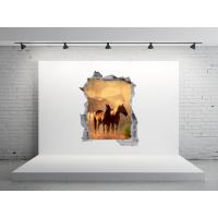 Boquete en pared vista a caballos