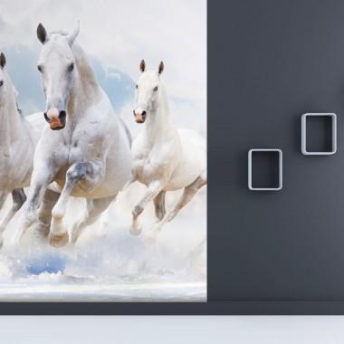 fotomural-a-medida-caballos