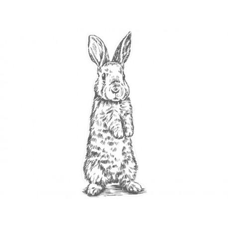 vinilo infantil conejo realista