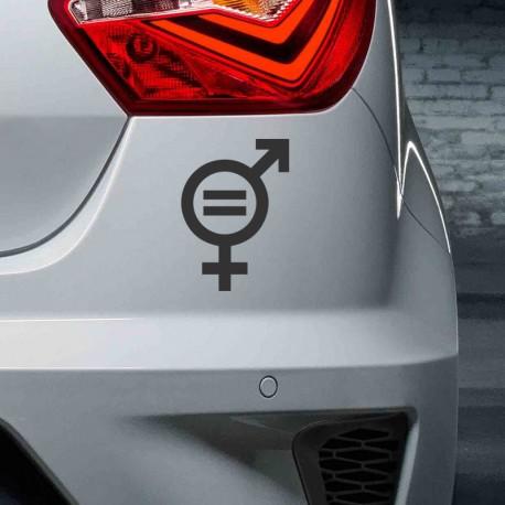 Igualdad de géneros vinilo