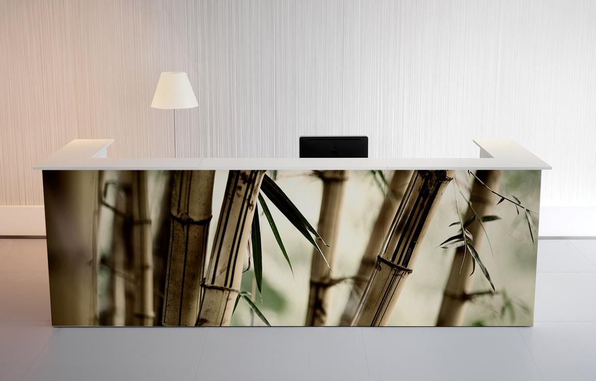 mostrador con vinilo imagen bambu